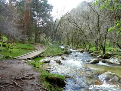 Cascadas Purgatorio,Bosque Finlandia; club de montaña en madrid; mochilas senderismo; senderismo gu